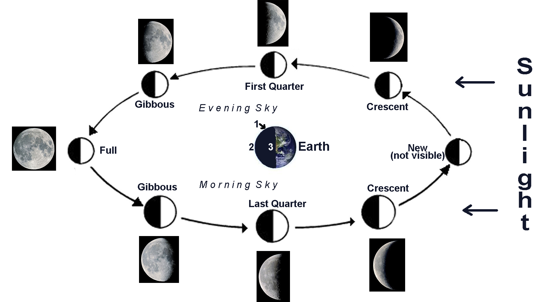 Moon Phases Diagram Phase of moon diagram